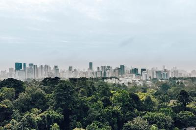 Urban Jungle Style, la tendenza del momento